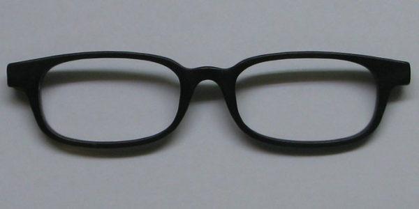 Hornbrille2