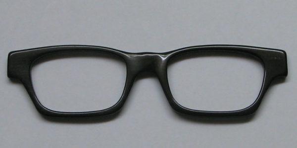Hornbrille5